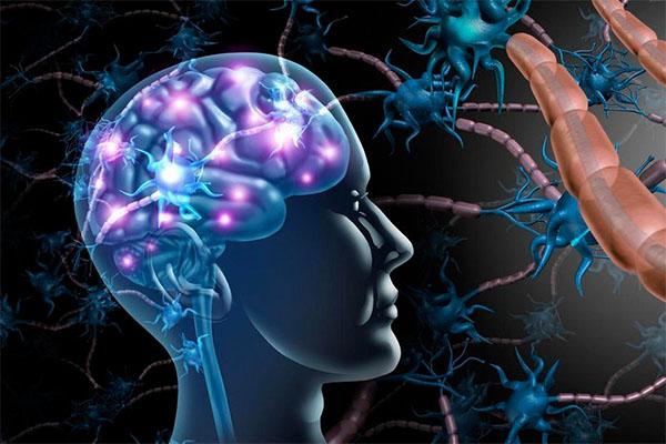 tratamiento con fisioterapia neurologica